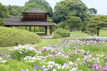 MOTAおすすめ ドライブしたい岡山県の観光スポットと露天風呂付き高級旅館