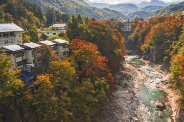 全室源泉かけ流しの専用風呂付き 四季が彩る渓谷の隠れ宿